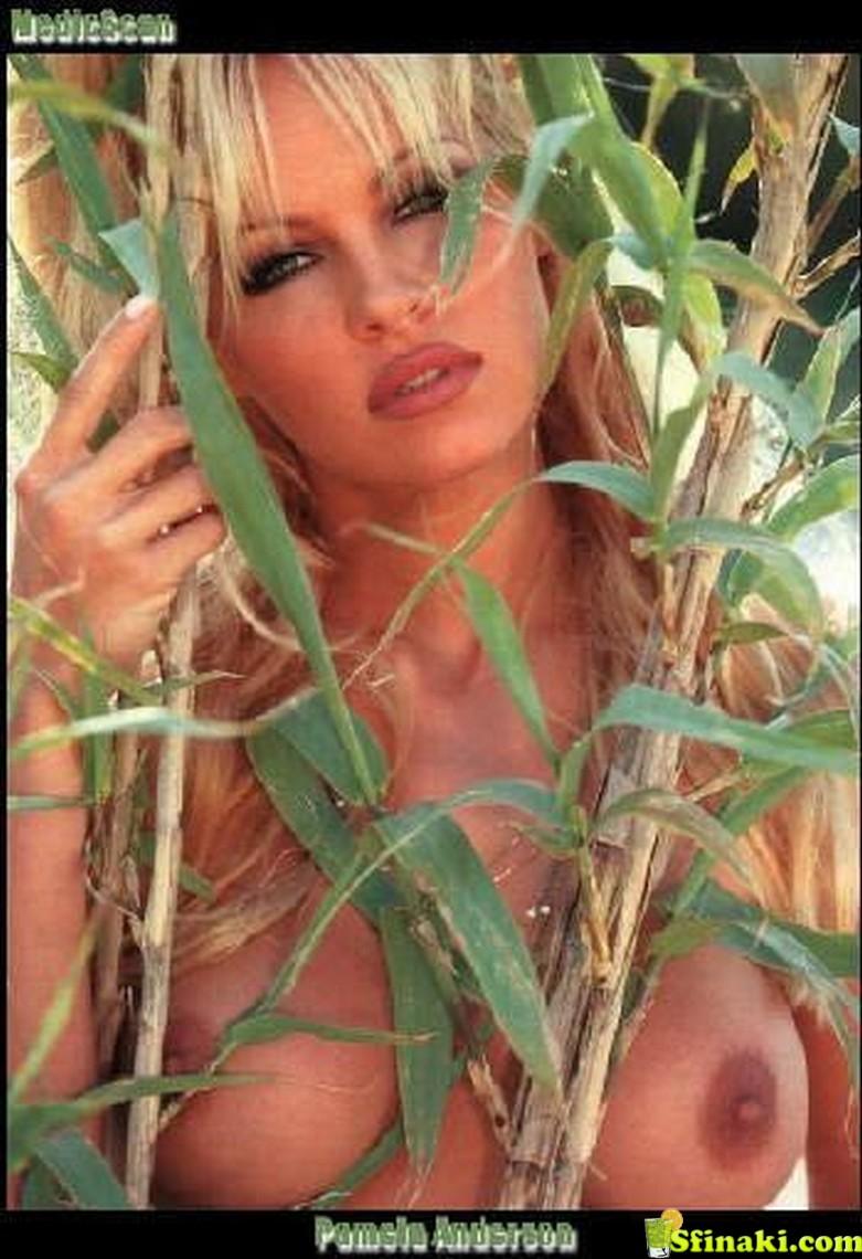 Pamela Anderson Naked 17