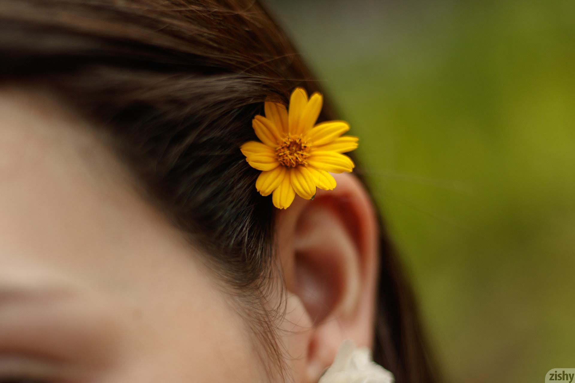 Paloma Andaquies Flores Colombianas Zishy (14)