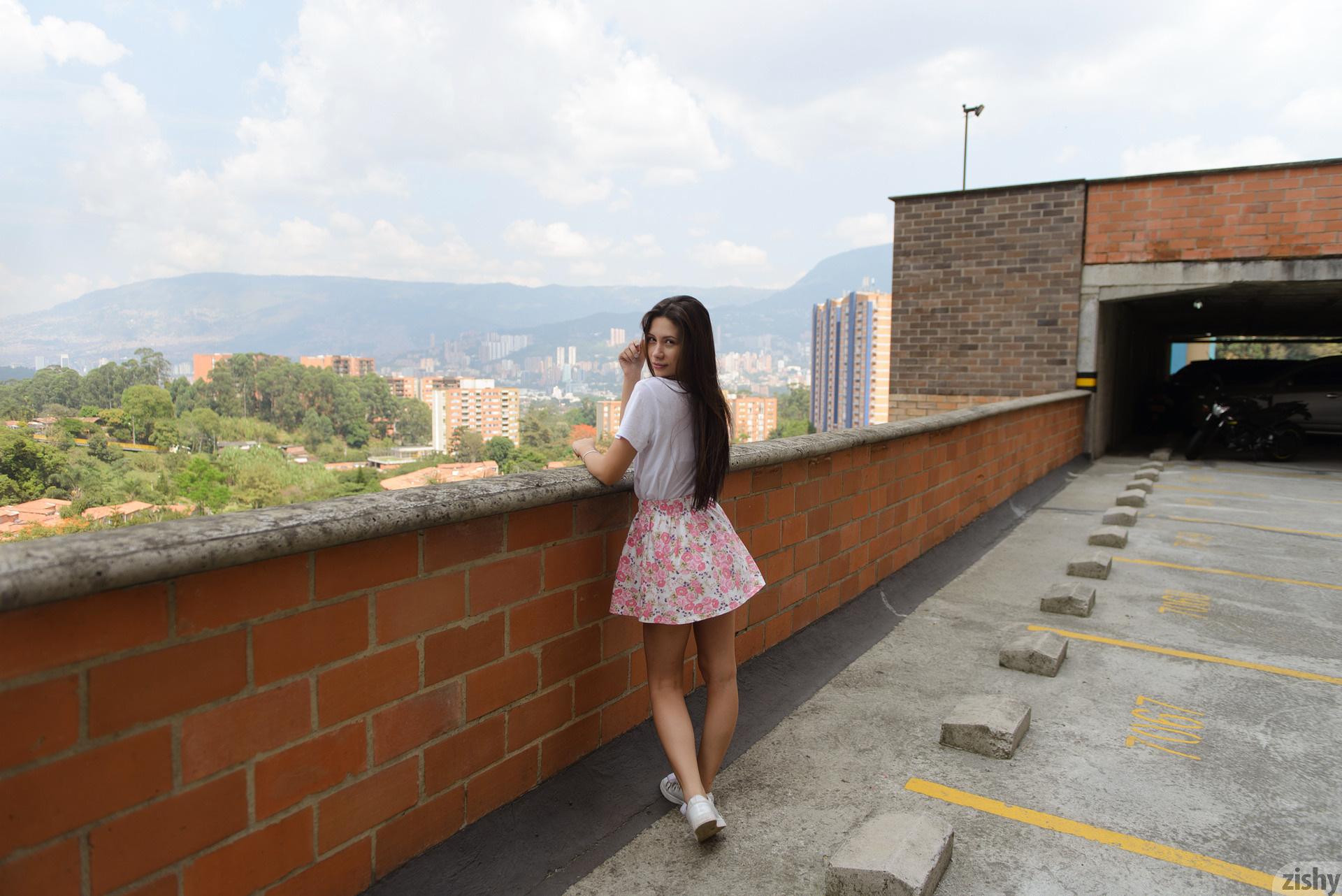 Paloma Andaquies Flores Colombianas Zishy (19)