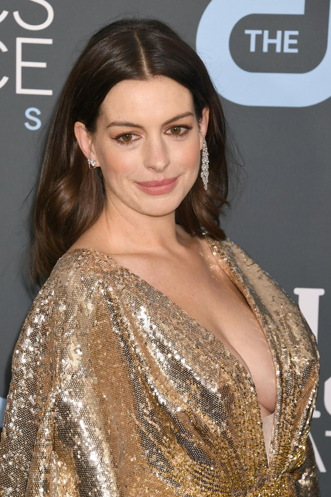 Anne Hathaway's Tits 0074