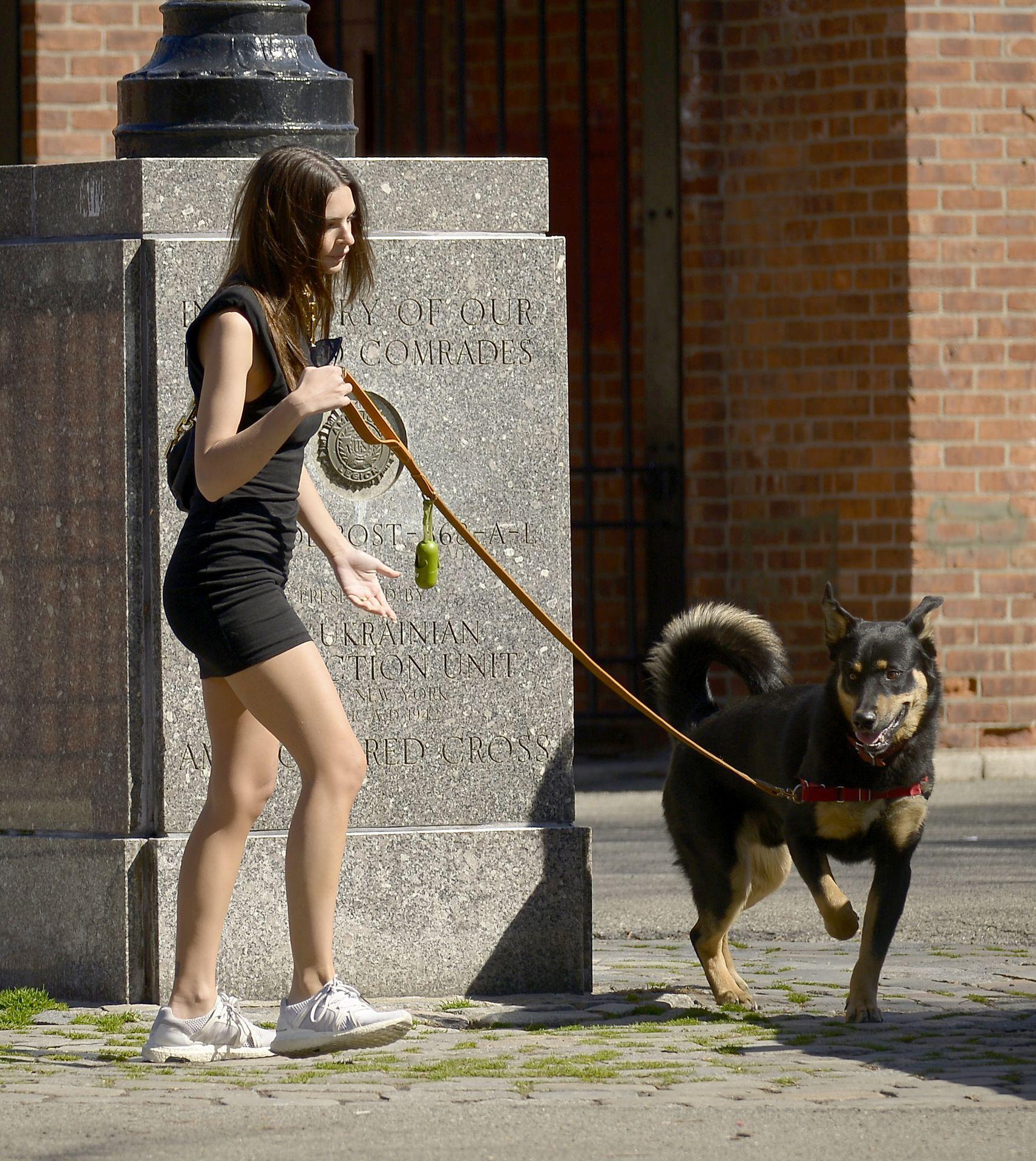 Emily Ratajkowski Takes Her Dog To A Dog Park In New York City 0008
