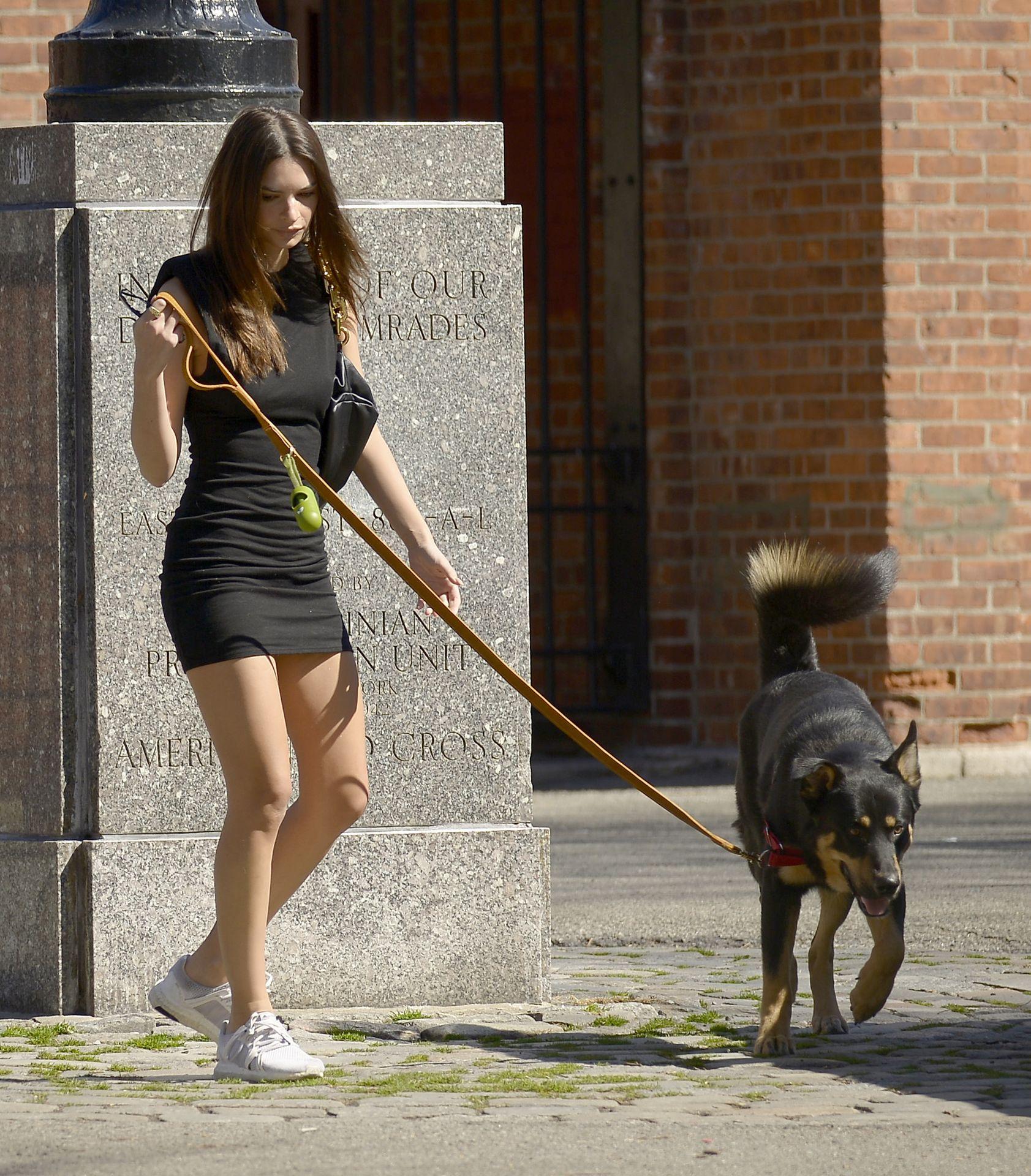 Emily Ratajkowski Takes Her Dog To A Dog Park In New York City 0009
