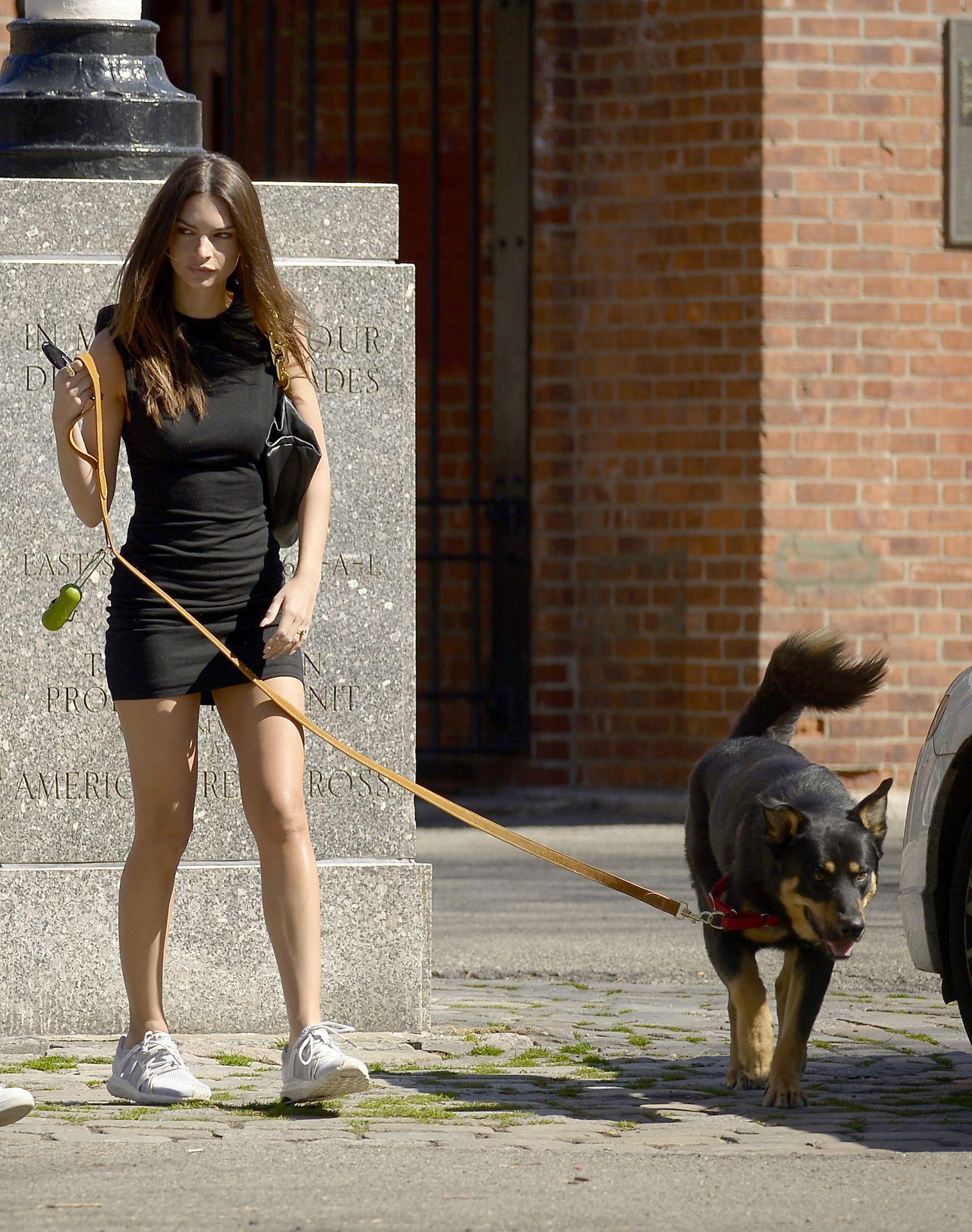 Emily Ratajkowski Takes Her Dog To A Dog Park In New York City 0010