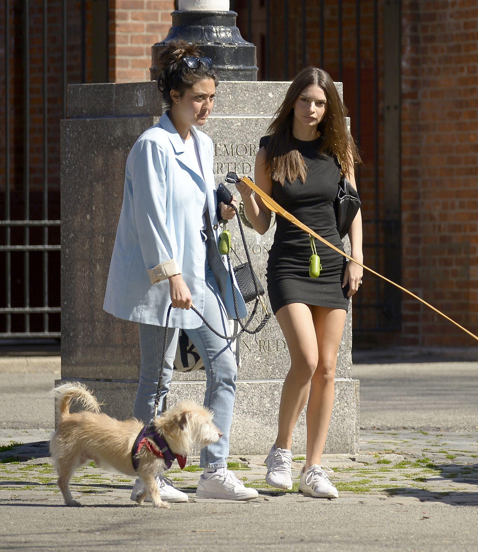 Emily Ratajkowski Takes Her Dog To A Dog Park In New York City 0011