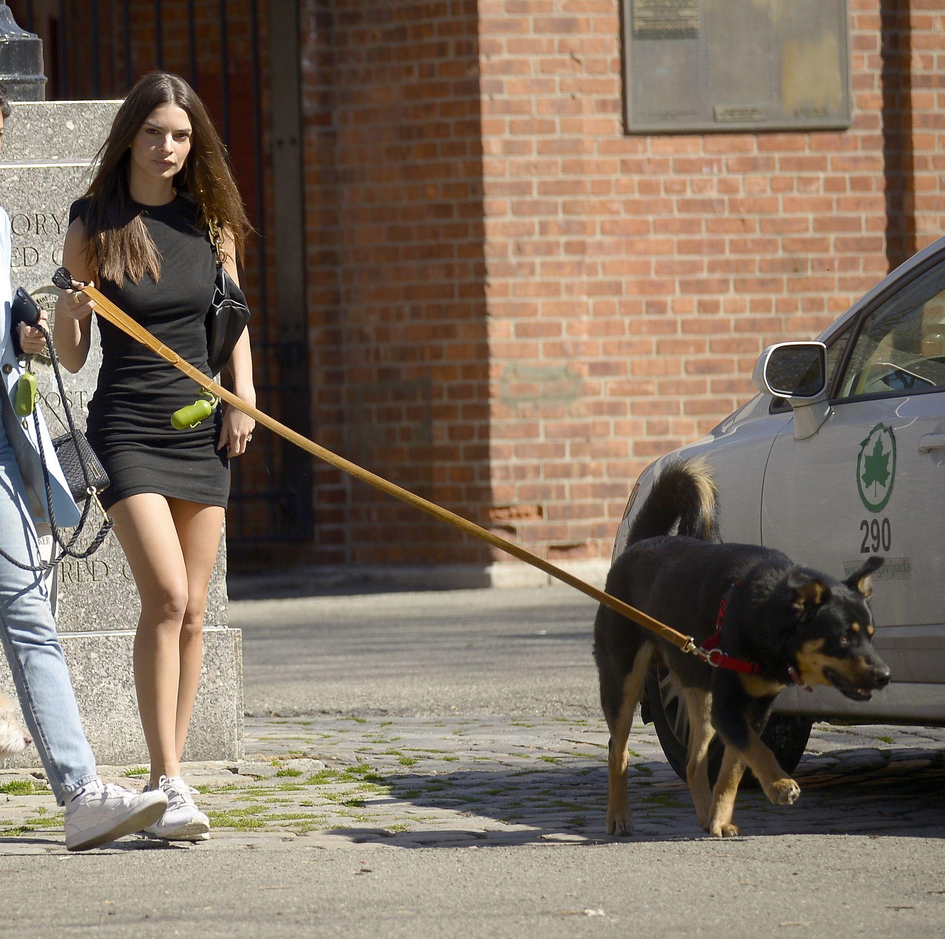 Emily Ratajkowski Takes Her Dog To A Dog Park In New York City 0012