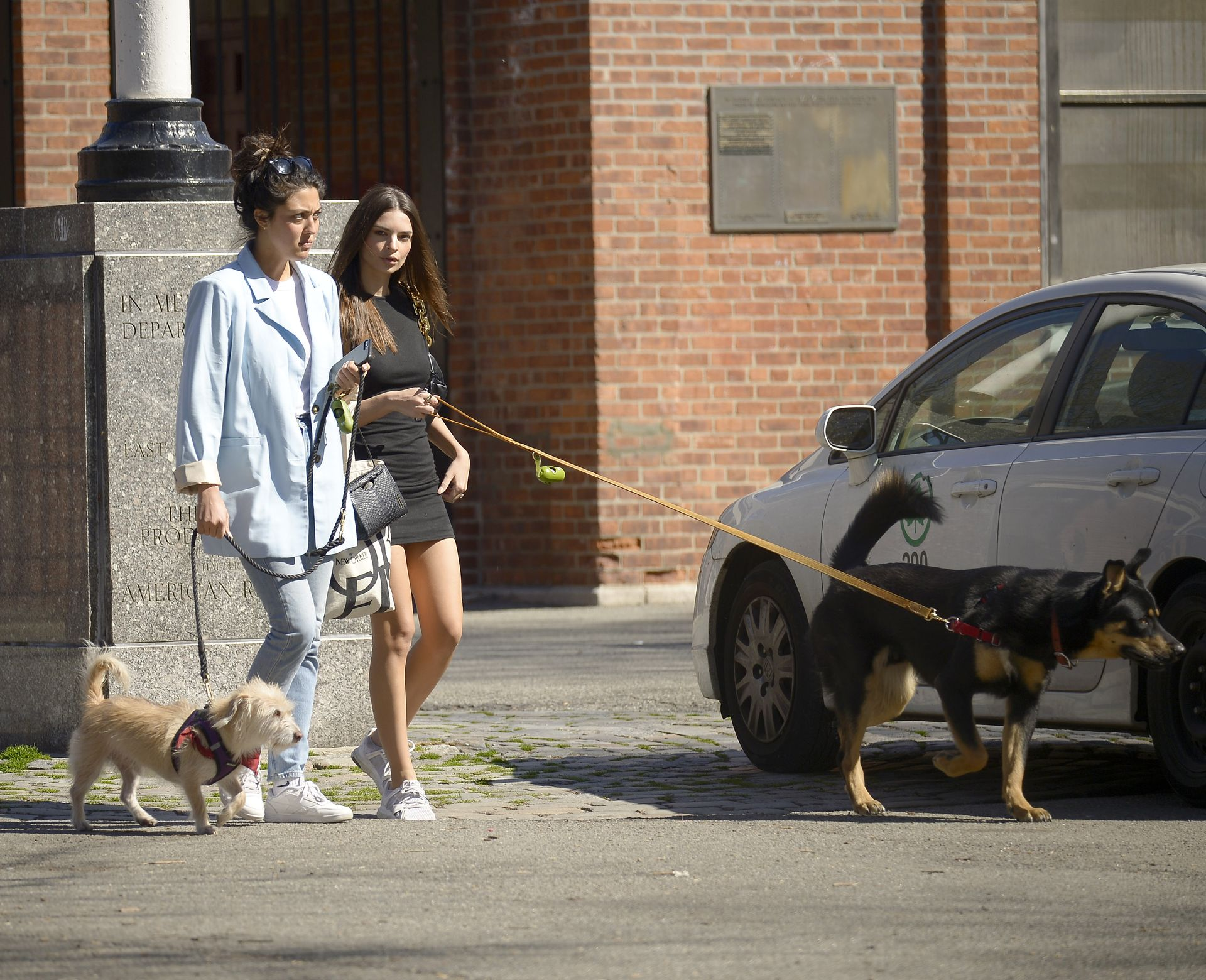 Emily Ratajkowski Takes Her Dog To A Dog Park In New York City 0013
