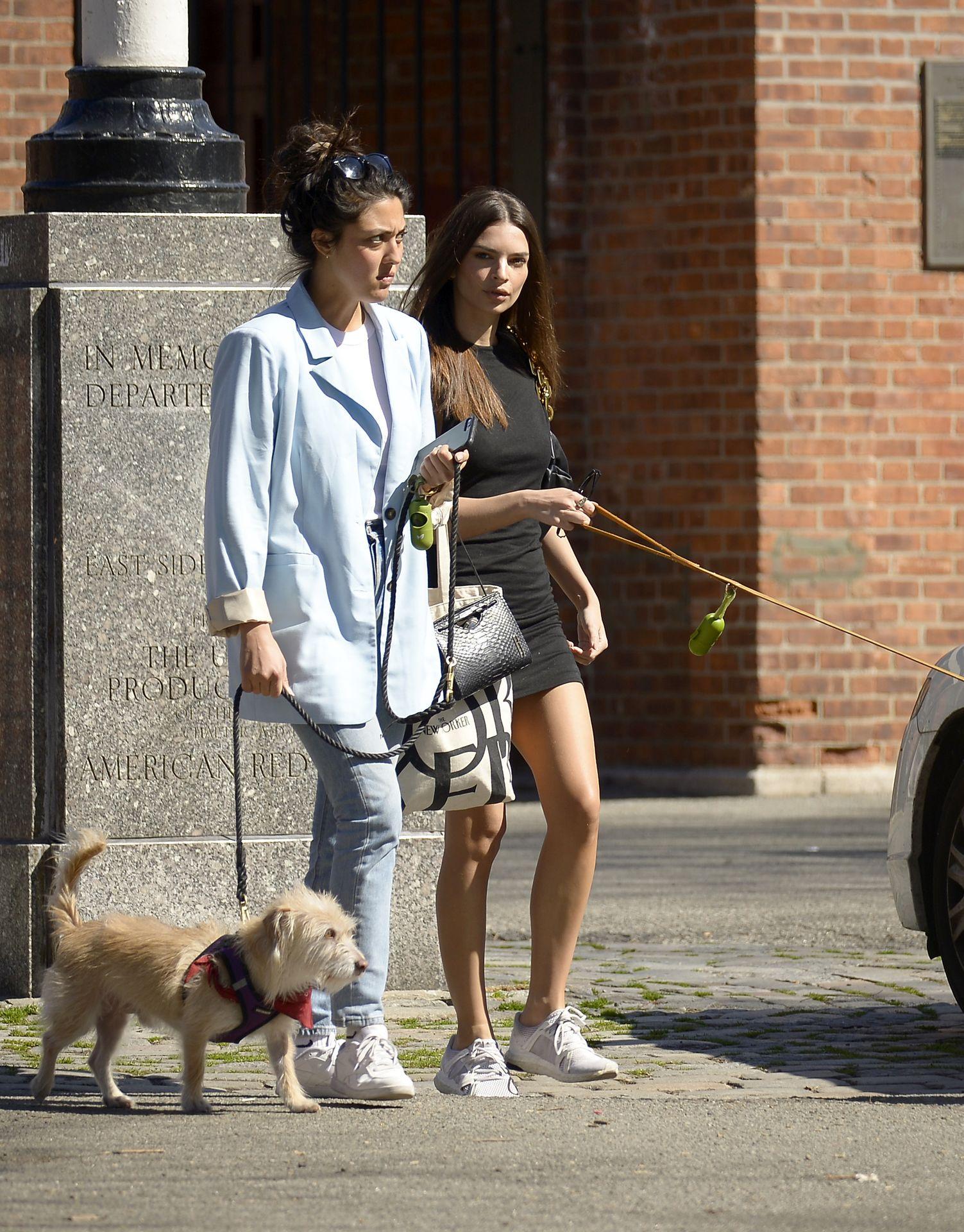 Emily Ratajkowski Takes Her Dog To A Dog Park In New York City 0014