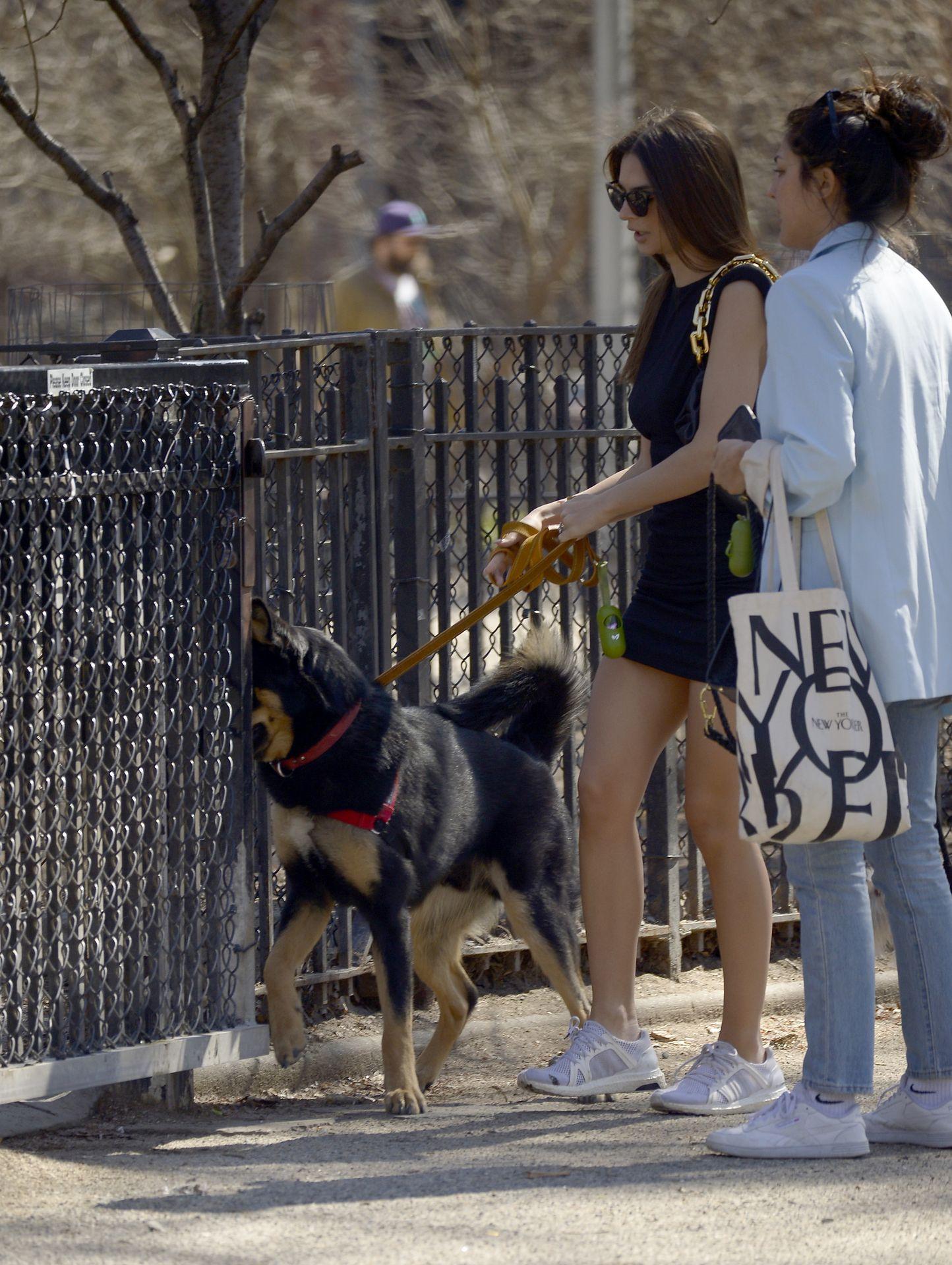 Emily Ratajkowski Takes Her Dog To A Dog Park In New York City 0016