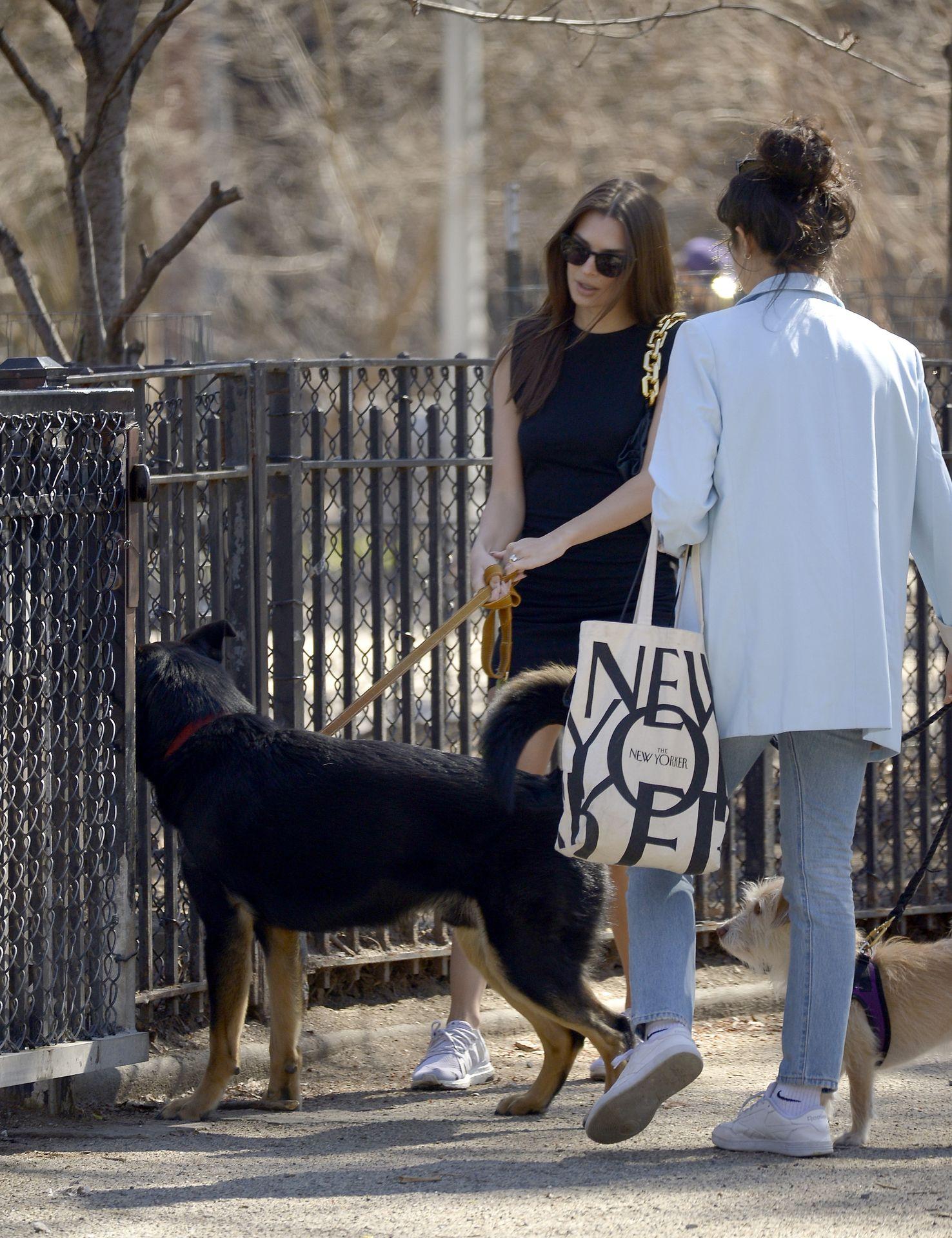Emily Ratajkowski Takes Her Dog To A Dog Park In New York City 0017