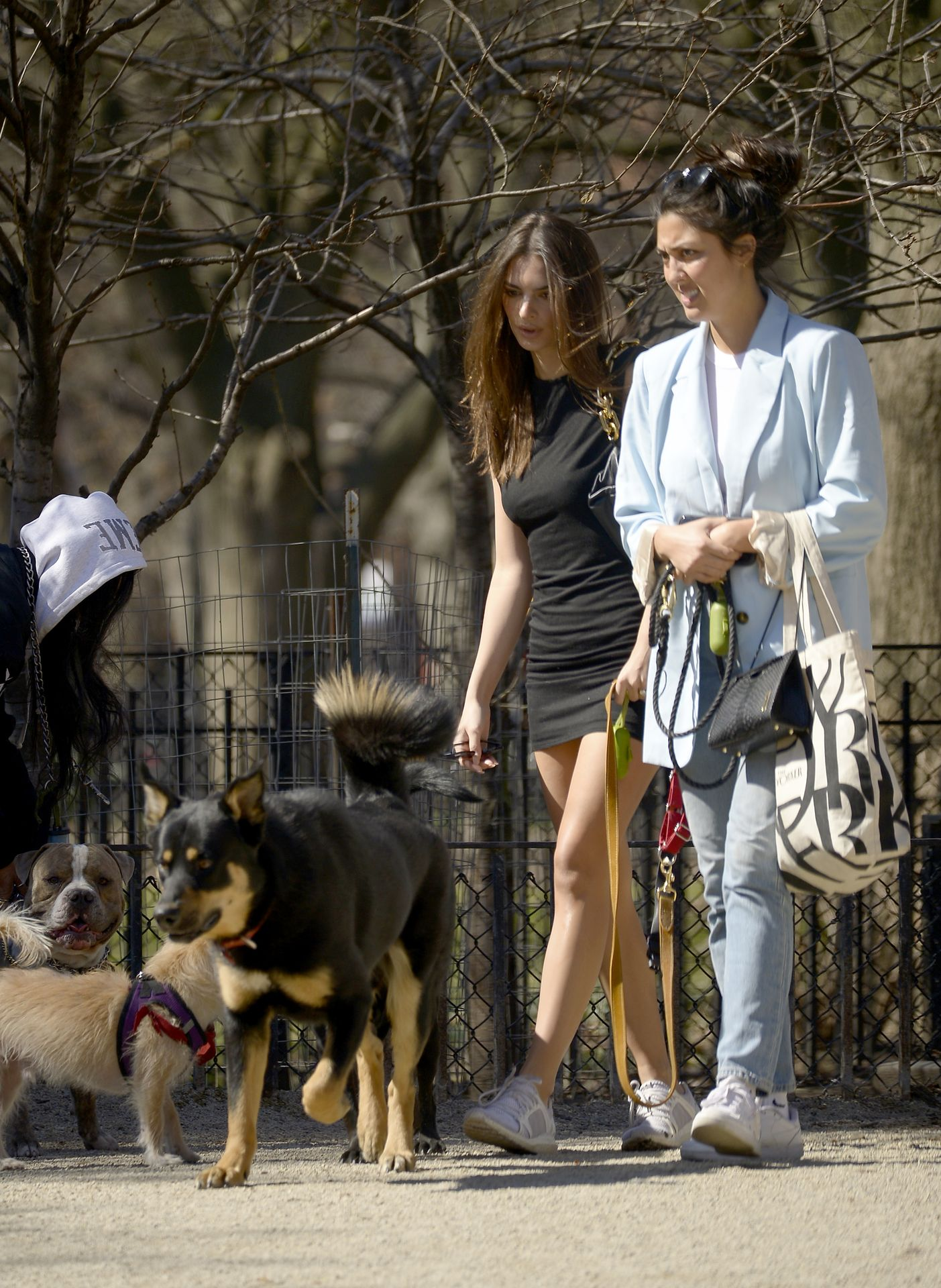 Emily Ratajkowski Takes Her Dog To A Dog Park In New York City 0020