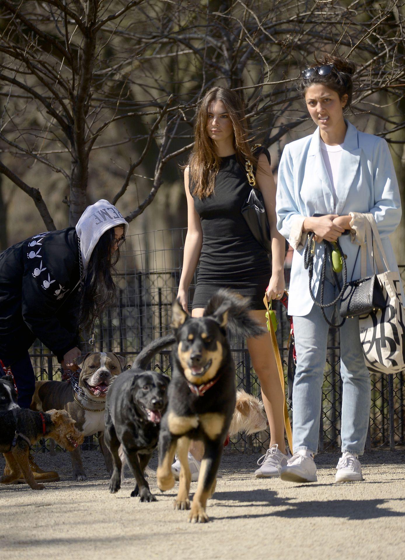 Emily Ratajkowski Takes Her Dog To A Dog Park In New York City 0021
