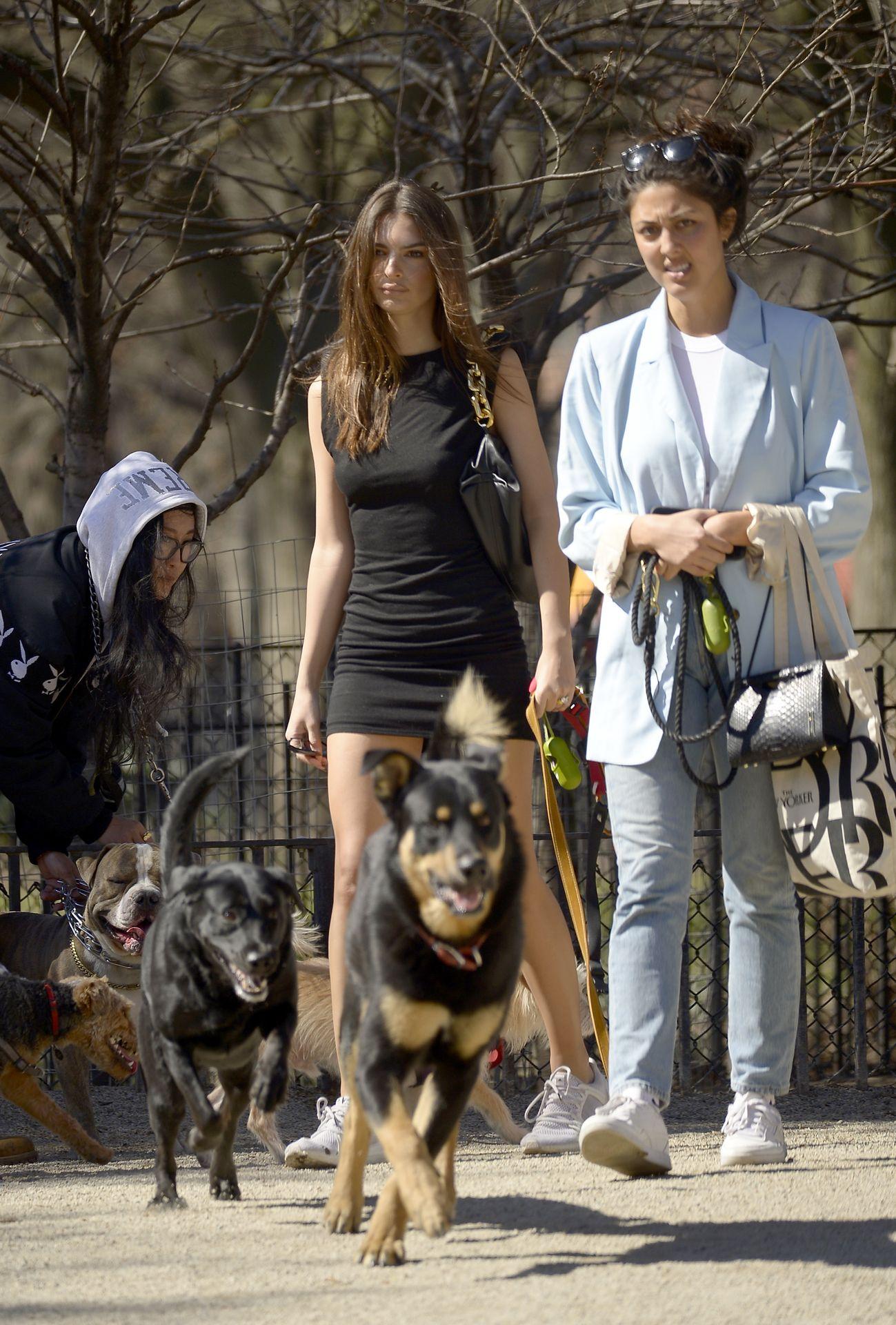 Emily Ratajkowski Takes Her Dog To A Dog Park In New York City 0022