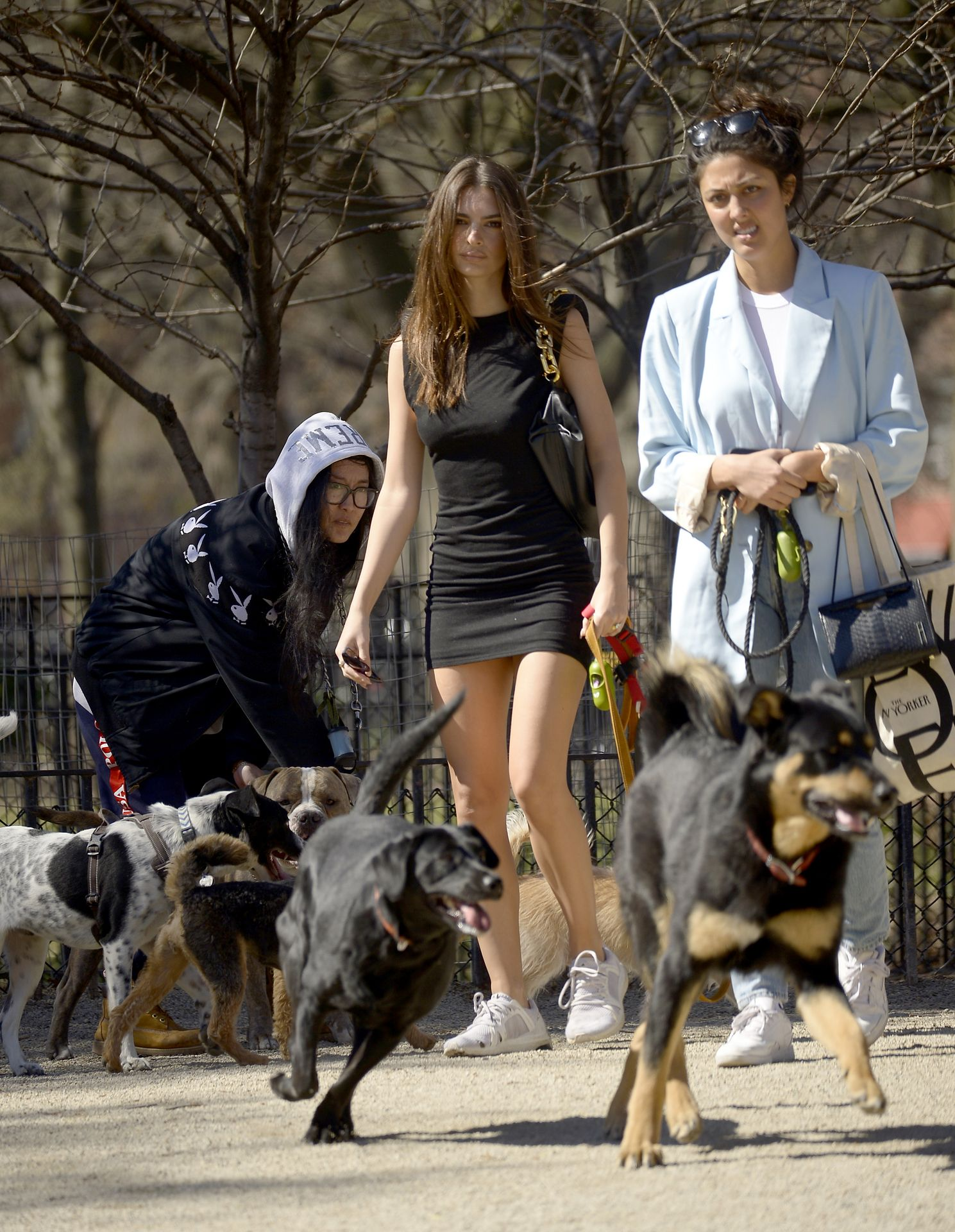 Emily Ratajkowski Takes Her Dog To A Dog Park In New York City 0023