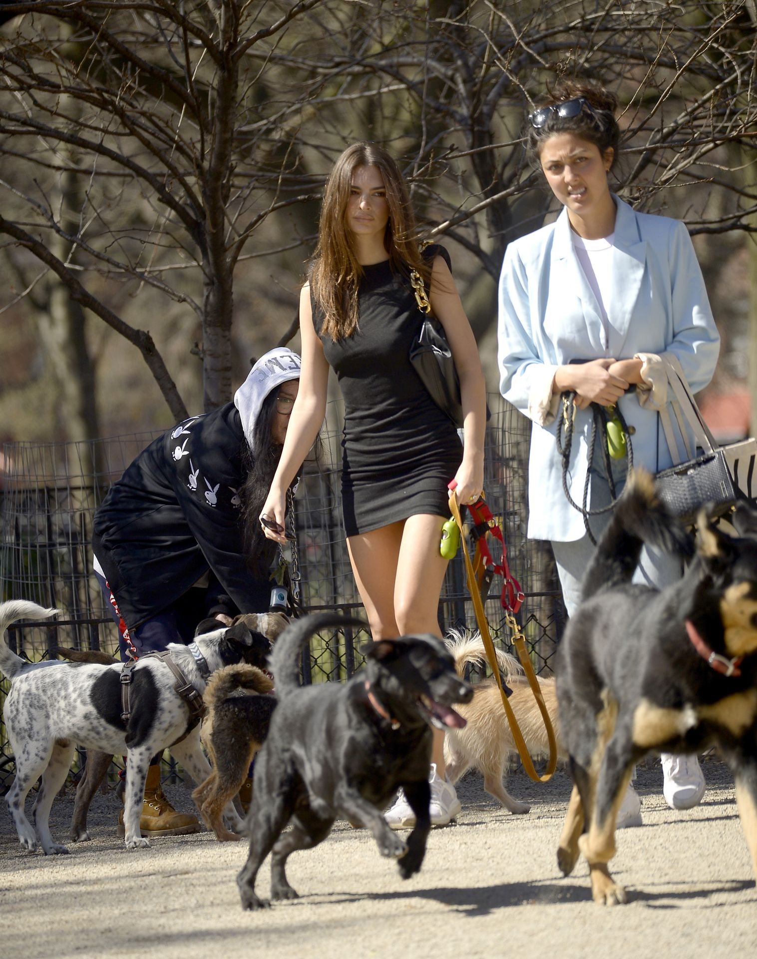 Emily Ratajkowski Takes Her Dog To A Dog Park In New York City 0024