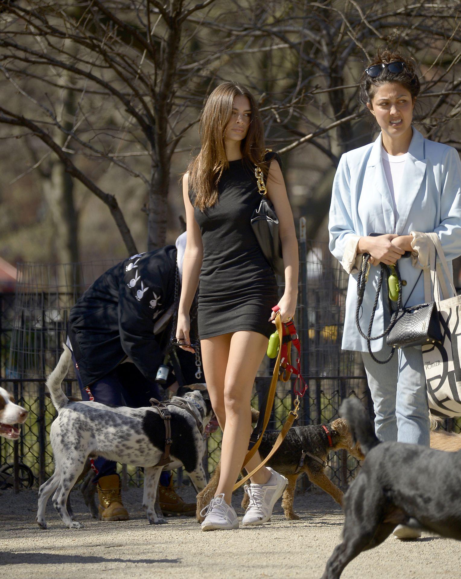 Emily Ratajkowski Takes Her Dog To A Dog Park In New York City 0025