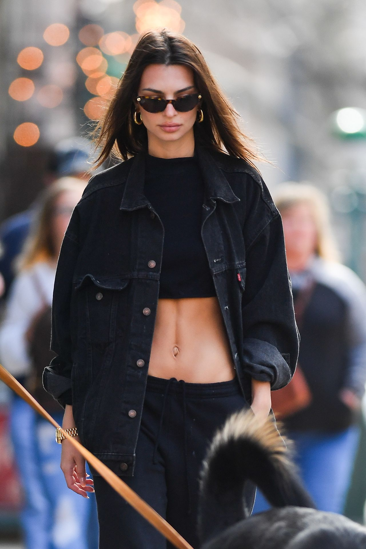 Emily Ratajkowski Walks With Her Dog Colombo In Nyc 0020