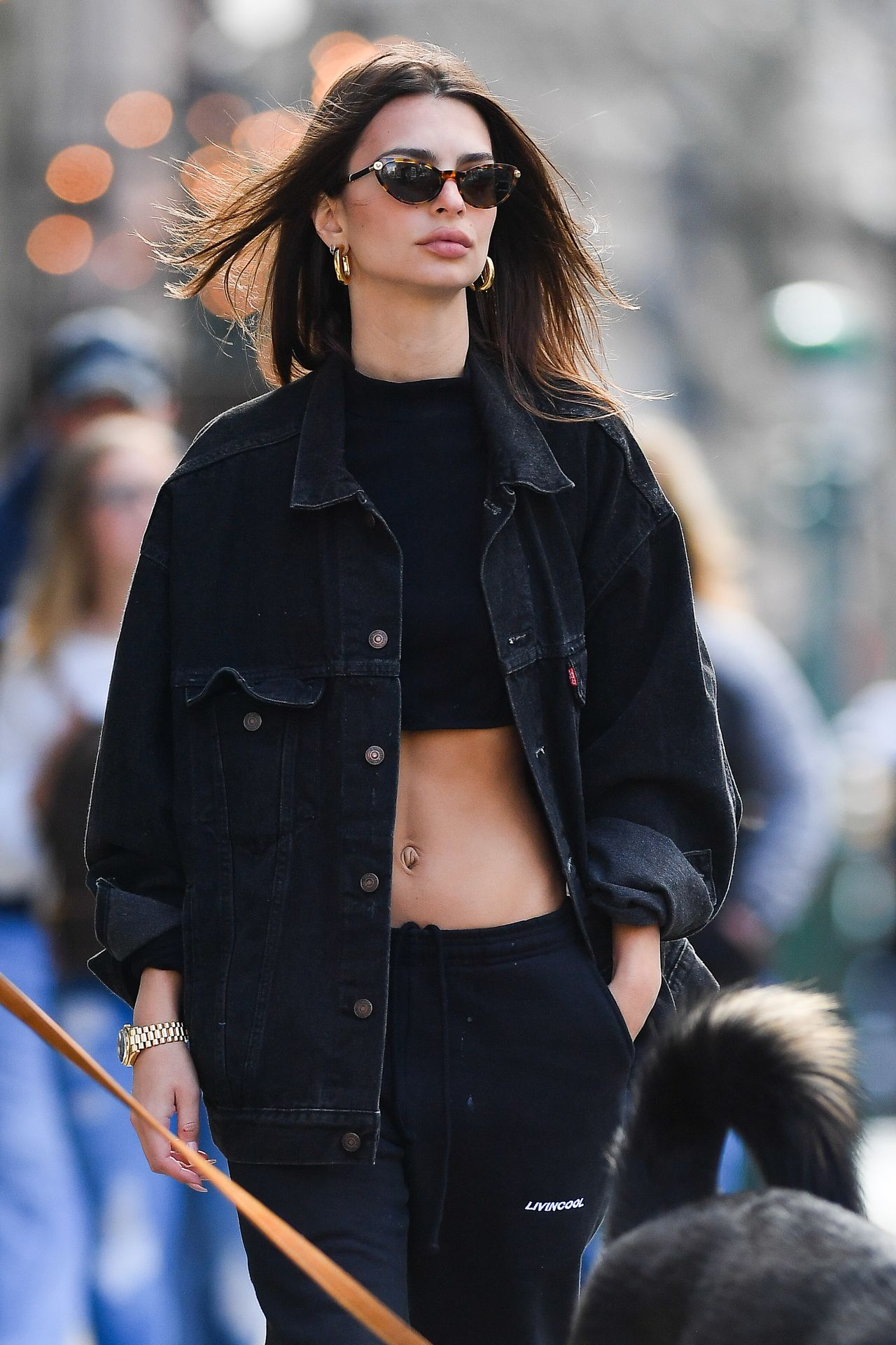 Emily Ratajkowski Walks With Her Dog Colombo In Nyc 0025