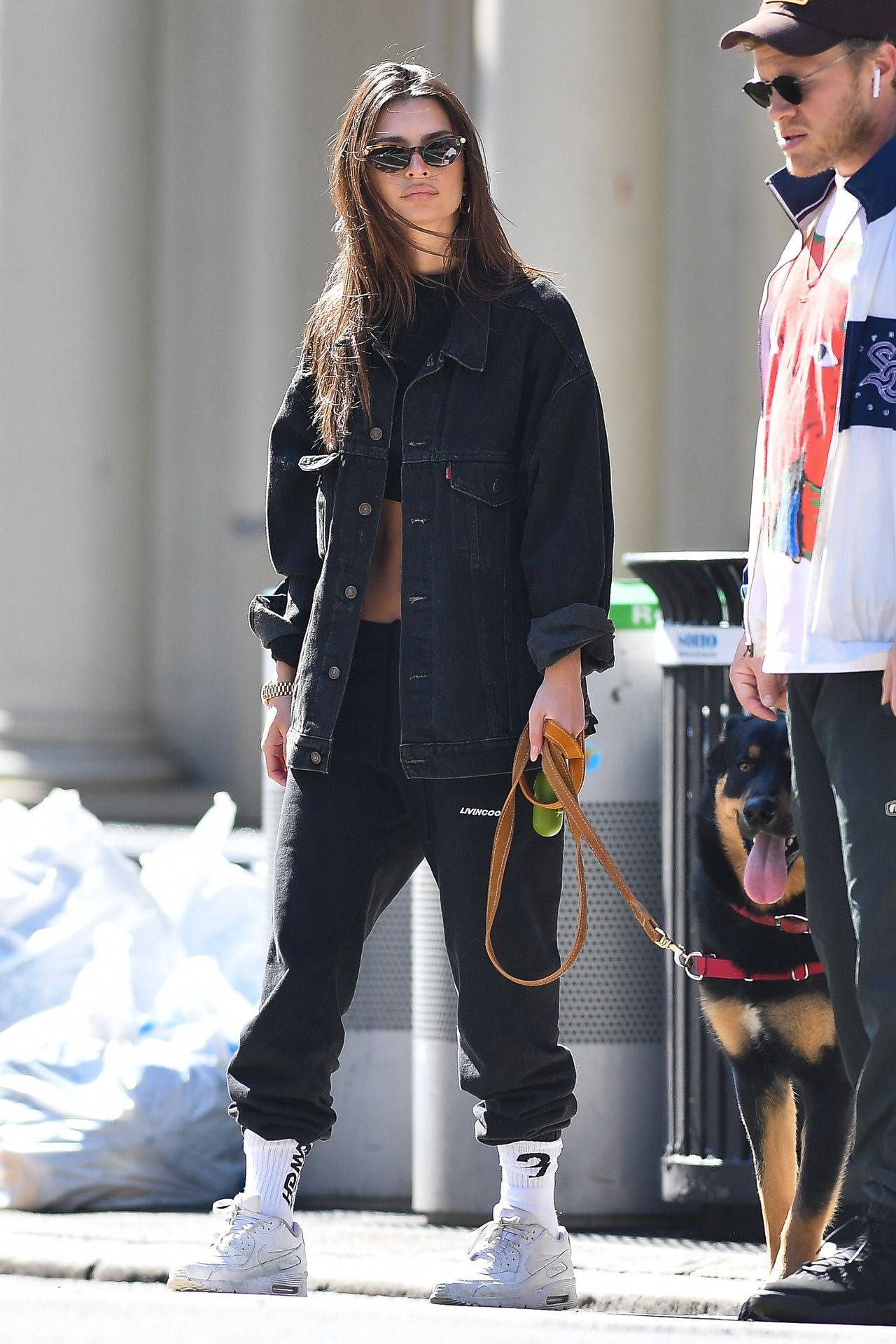 Emily Ratajkowski Walks With Her Dog Colombo In Nyc 0030