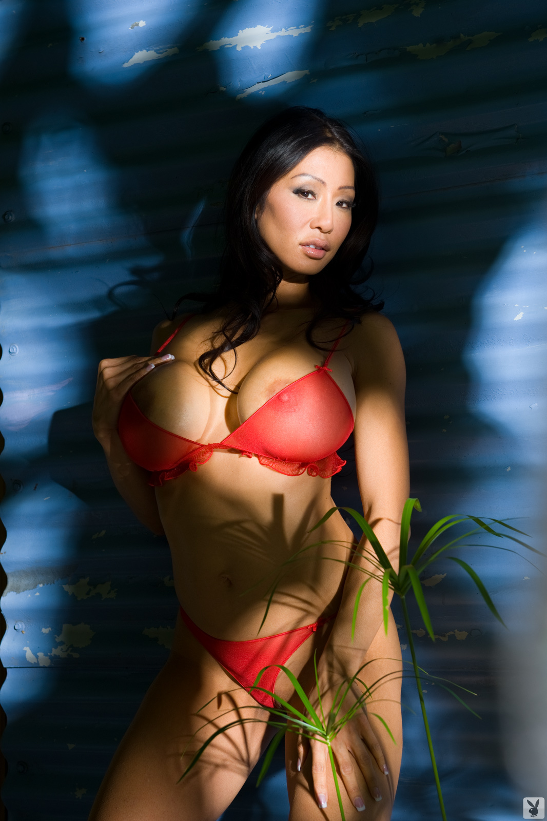 Kiana Kim Nude On Playboy Plus (4)