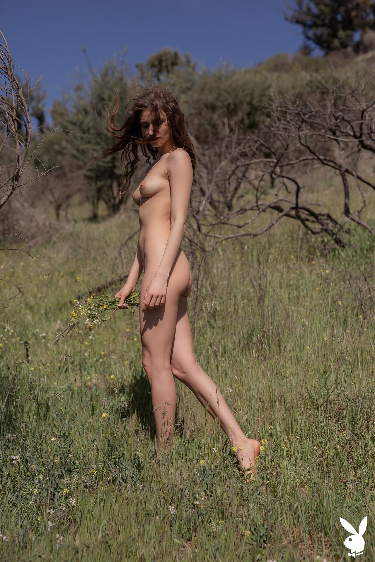 Ilvy Kokomo In Wild Wonder Playboy Plus (20)