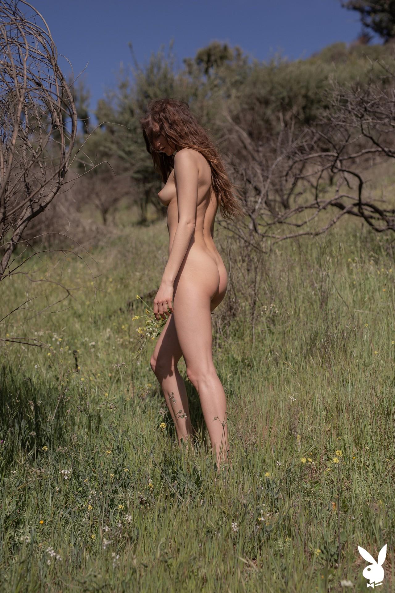 Ilvy Kokomo In Wild Wonder Playboy Plus (21)