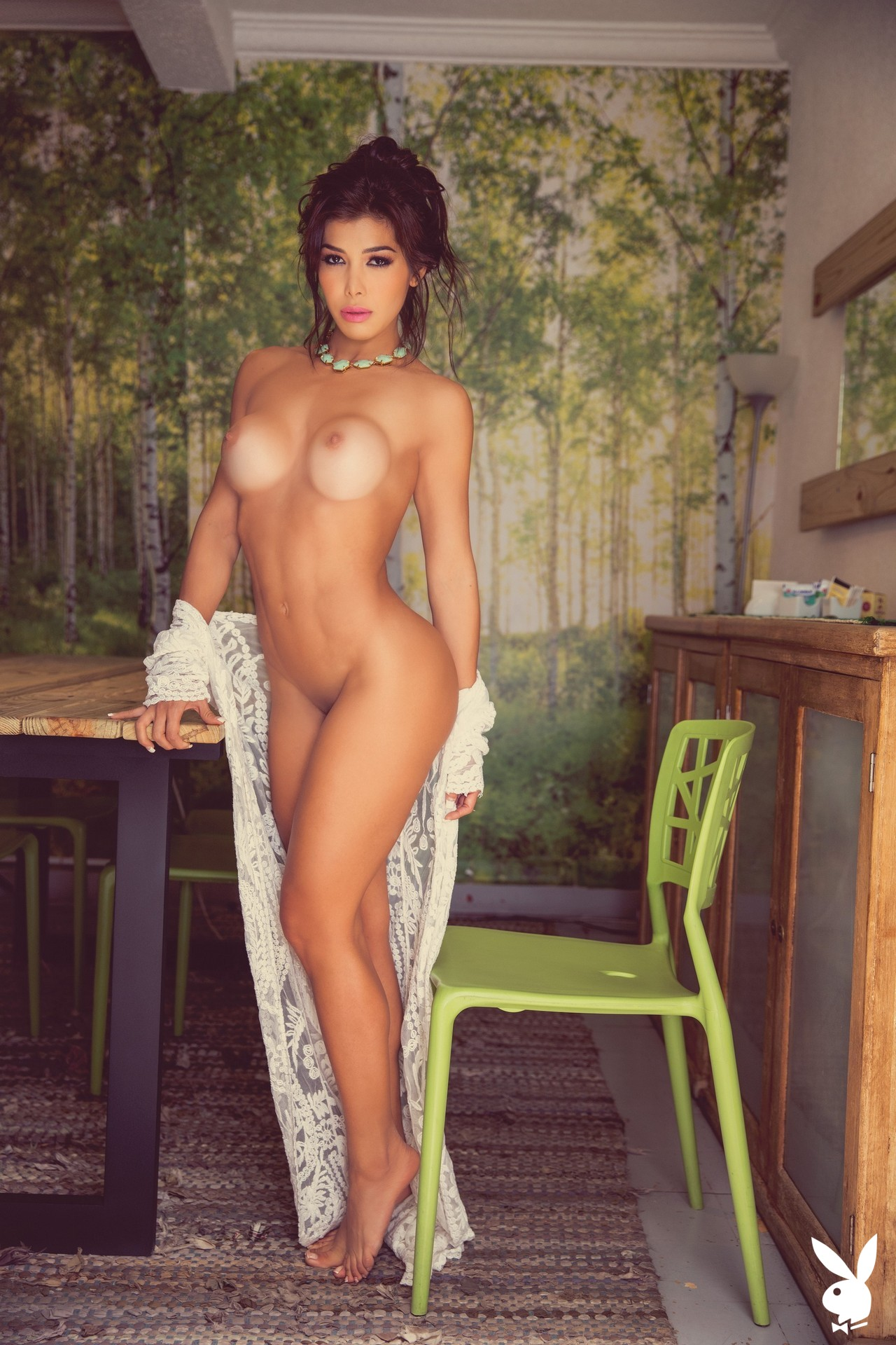 Ana Espinola In Playboy Mexico (3)